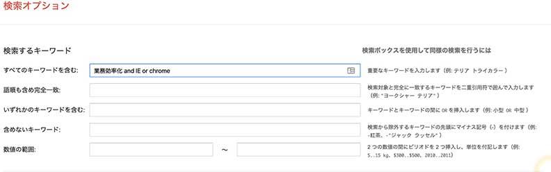 検索オプション2